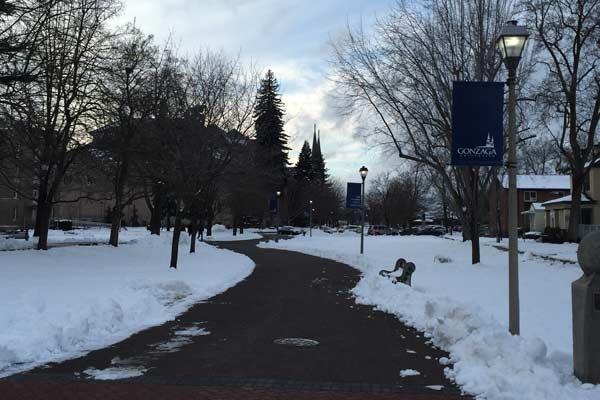 snowy Gonzaga