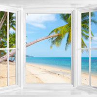 Tropical window decal