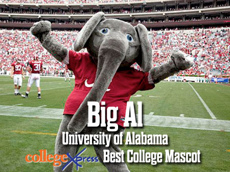 Big Al CollegeXpress Best College Mascot