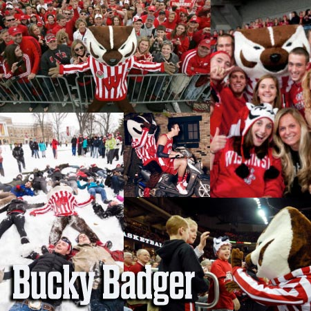 Bucky Badger collage