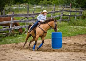 Colleges with Strength in Rodeo