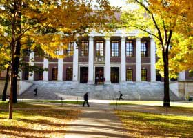Ivy League Colleges Ranked by Percentage of Undergraduates to Total Enrollment