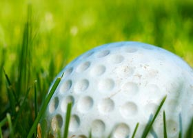 Colleges With Strength in Men's Golf