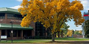SUNY -- Polytechnic InstituteLogo