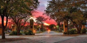 Minnesota State University MoorheadLogo