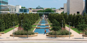 Texas, University of, DallasLogo