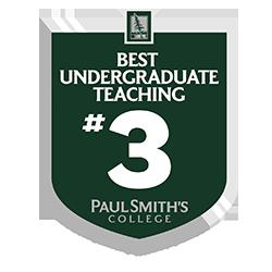 Undergrad Teaching